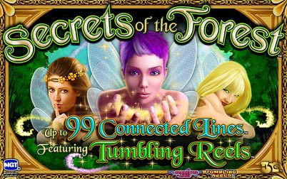 Play Secrets of the Forest - Slots - High 5 Games