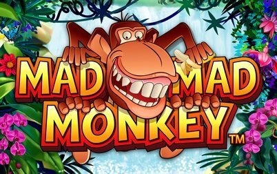 Play Mad Mad Monkey - Slots - NYX games