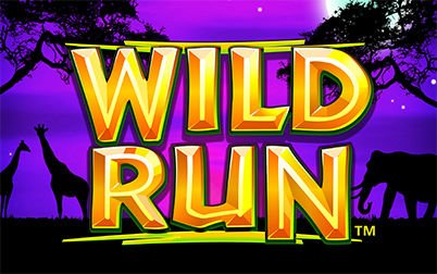Play Wild Run - Slots - NextGen