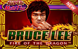 Play Bruce Lee: Fire of the Dragon - Slots - WMS games
