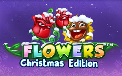 Play Flowers Christmas Edition™ - Slots - NetEnt games