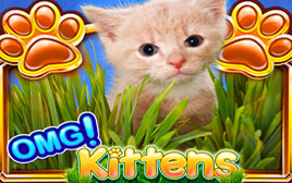 Play OMG Kittens - Slots - WMS games