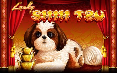 Play Lucky Shih Tzu - Slots - Spin games