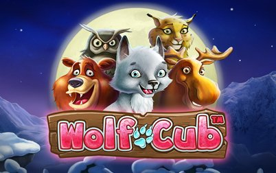 Play Wolf Cub Touch - Slots - NetEnt games